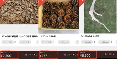 意外に売れる商品④一見ゴミに見える自然のモノ1